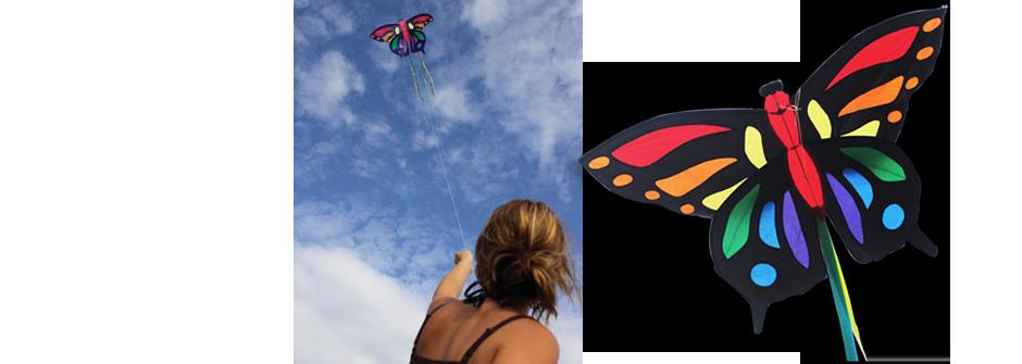 vlinder papillon Schmetterling butterfly drachen kite vlieger